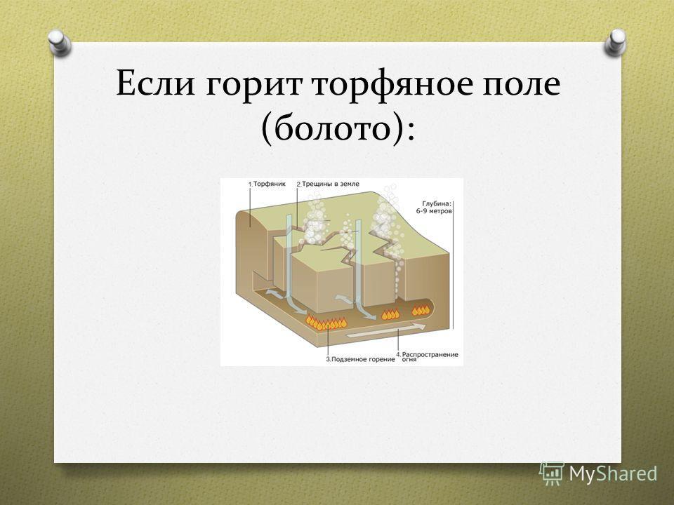 Если горит торфяное поле (болото):