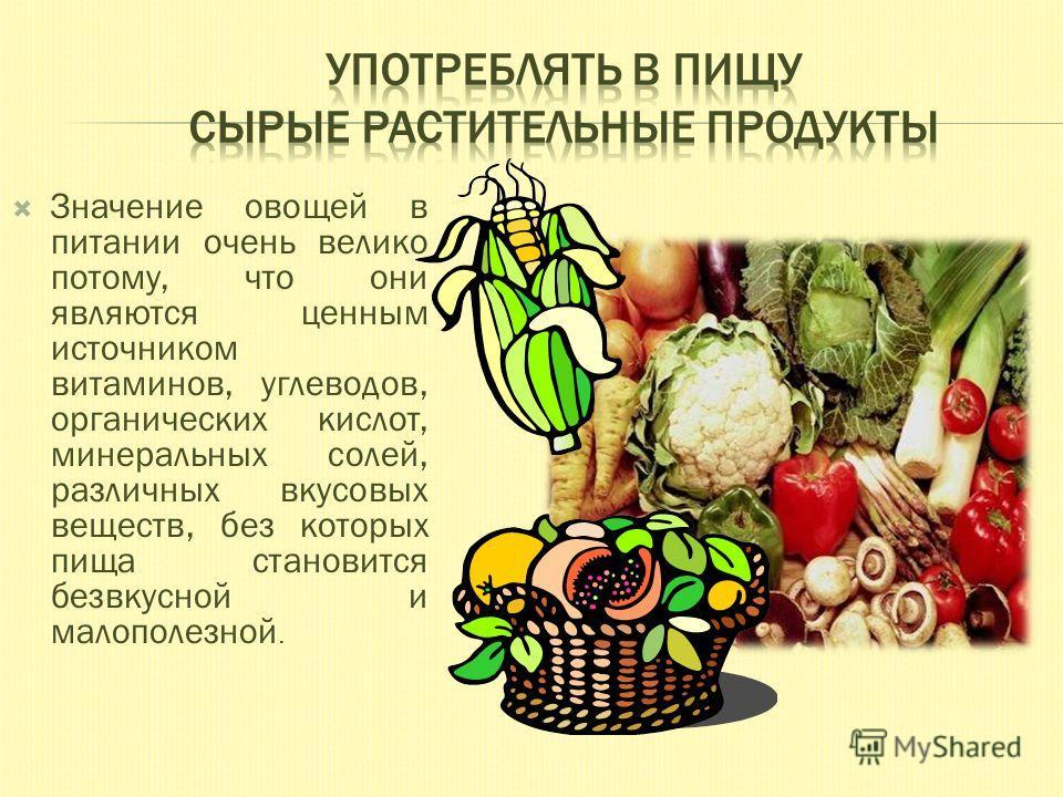 Значение овощей в питании очень велико потому, что они являются ценным источником витаминов, углеводов, органических кислот, минеральных солей, различных вкусовых веществ, без которых пища становится безвкусной и малополезной.