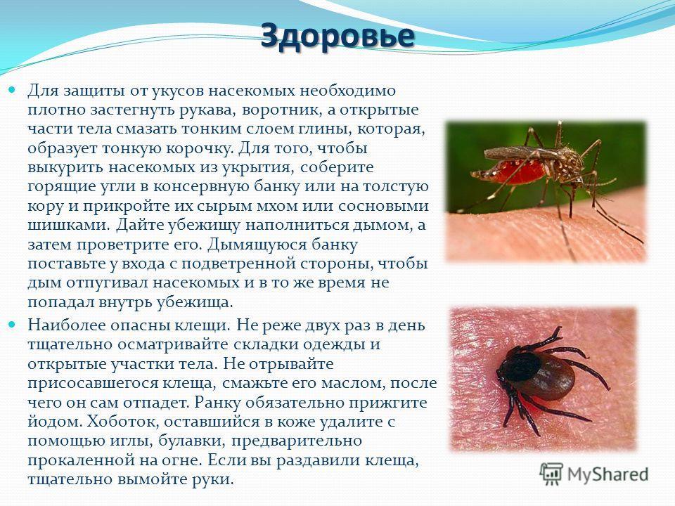 Здоровье Для защиты от укусов насекомых необходимо плотно застегнуть рукава, воротник, а открытые части тела смазать тонким слоем глины, которая, образует тонкую корочку. Для того, чтобы выкурить насекомых из укрытия, соберите горящие угли в консервн