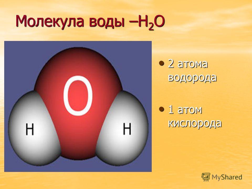 Молекула воды –Н 2 О 2 атома водорода 2 атома водорода 1 атом кислорода 1 атом кислорода