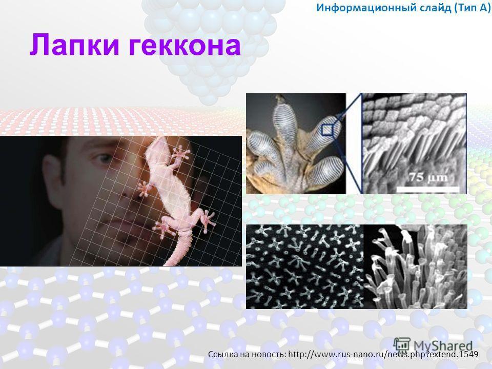 Лапки геккона Информационный слайд (Тип А) Ссылка на новость: http://www.rus-nano.ru/news.php?extend.1549