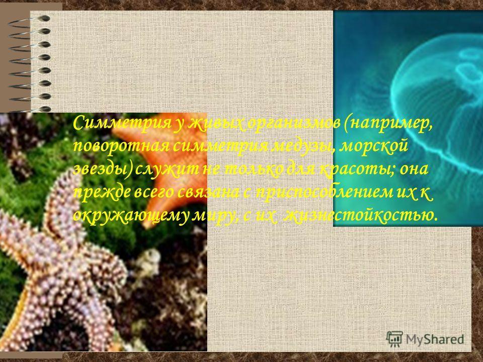 Симметрия у живых организмов (например, поворотная симметрия медузы, морской звезды) служит не только для красоты; она прежде всего связана с приспособлением их к окружающему миру, с их жизнестойкостью.