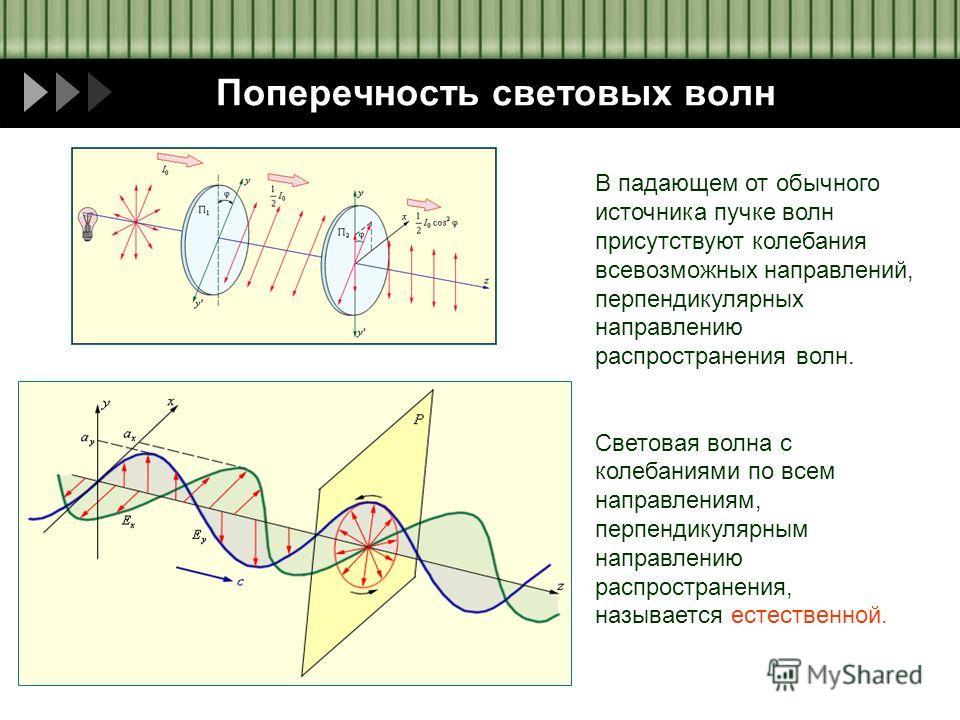 Пащенко И.В. Поперечность световых волн В падающем от обычного источника пучке волн присутствуют колебания всевозможных направлений, перпендикулярных направлению распространения волн. Световая волна с колебаниями по всем направлениям, перпендикулярны
