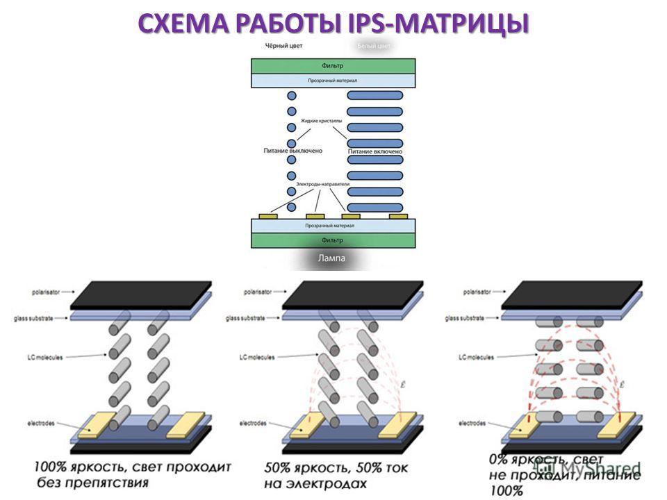 СХЕМА РАБОТЫ IPS-МАТРИЦЫ