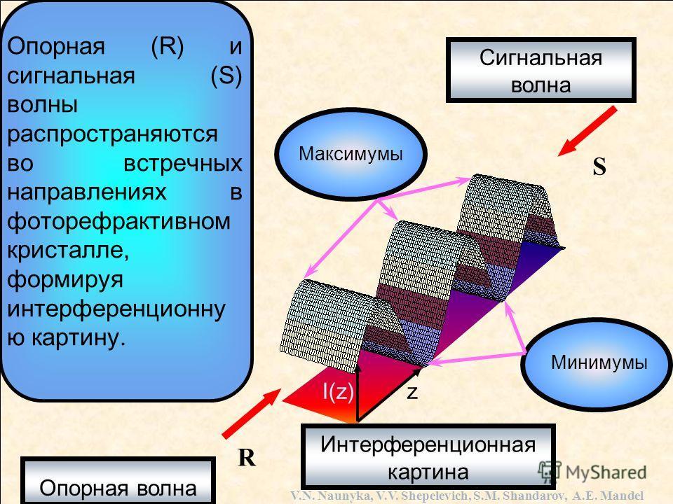Опорная волна Сигнальная волна Интерференционная картина Минимумы Максимумы Опорная (R) и сигнальная (S) волны распространяются во встречных направлениях в фоторефрактивном кристалле, формируя интерференционную картину. V.N. Naunyka, V.V. Shepelevich