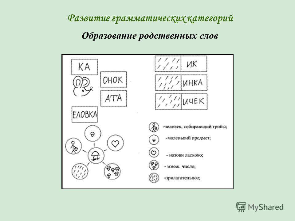Развитие грамматических категорий Образование родственных слов