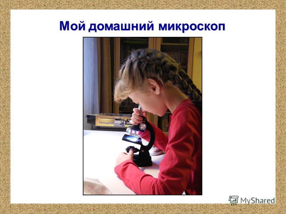 Мой домашний микроскоп