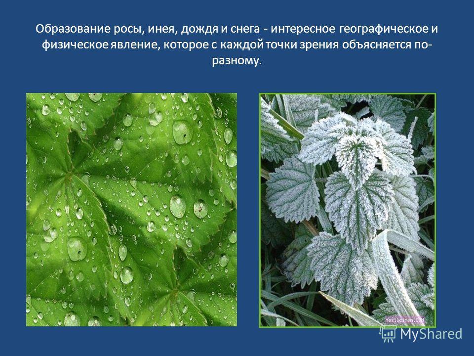 Образование росы, инея, дождя и снега - интересное географическое и физическое явление, которое с каждой точки зрения объясняется по- разному.
