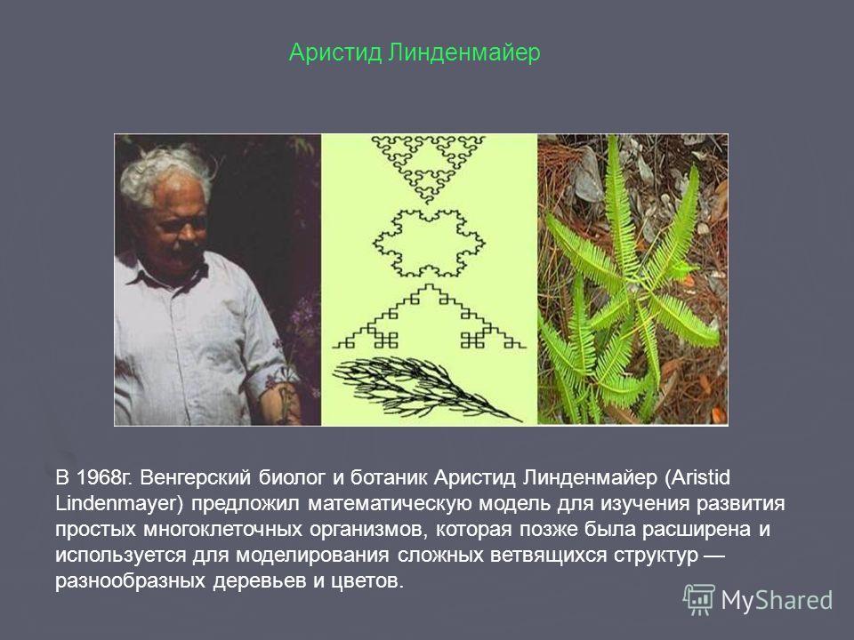 В 1968 г. Венгерский биолог и ботаник Аристид Линденмайер (Aristid Lindenmayer) предложил математическую модель для изучения развития простых многоклеточных организмов, которая позже была расширена и используется для моделирования сложных ветвящихся