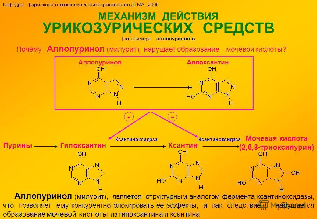 МЕХАНИЗМ ДЕЙСТВИЯ УРИКОЗУРИЧЕСКИХ СРЕДСТВ (на примере аллопуринола) Аллопуринол (милурит), является структурным аналогом фермента ксантиноксидазы, что позволяет ему конкурентно блокировать её эффекты, и как следствие - нарушается образование мочевой