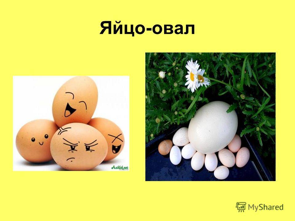 Яйцо-овал