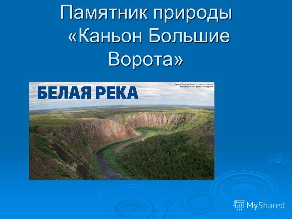 Памятник природы «Каньон Большие Ворота»