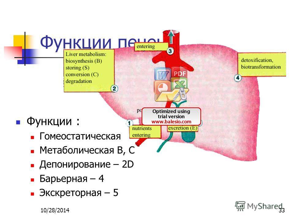 10/28/201433 Функции печени Функции : Гомеостатическая Метаболическая B, C Депонирование – 2D Барьерная – 4 Экскреторная – 5