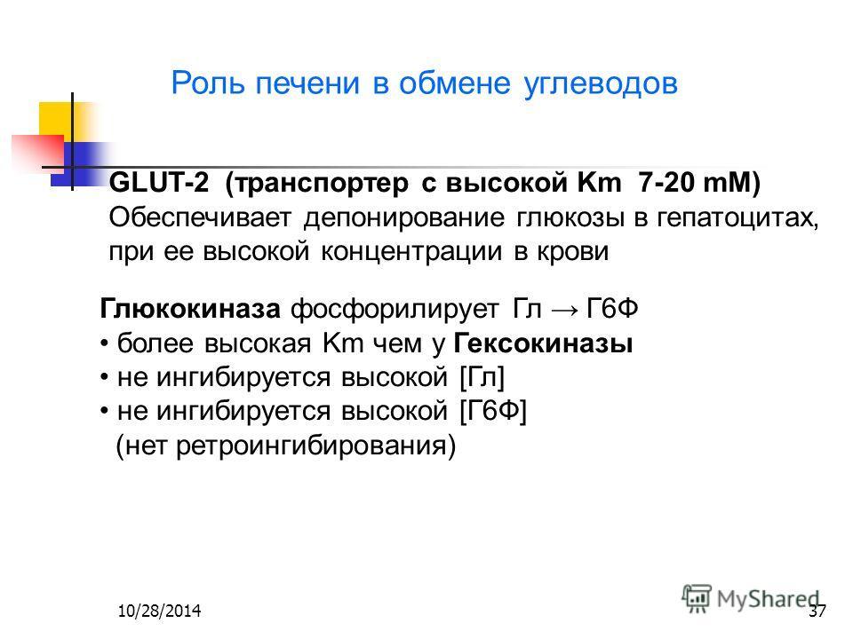 10/28/201437 Роль печени в обмене углеводов GLUT-2 (транспортер с высокой Km 7-20 mM) Обеспечивает депонирование глюкозы в гепатоцитах, при ее высокой концентрации в крови Глюкокиназа фосфорилирует Гл Г6Ф более высокая Km чем у Гексокиназы не ингибир