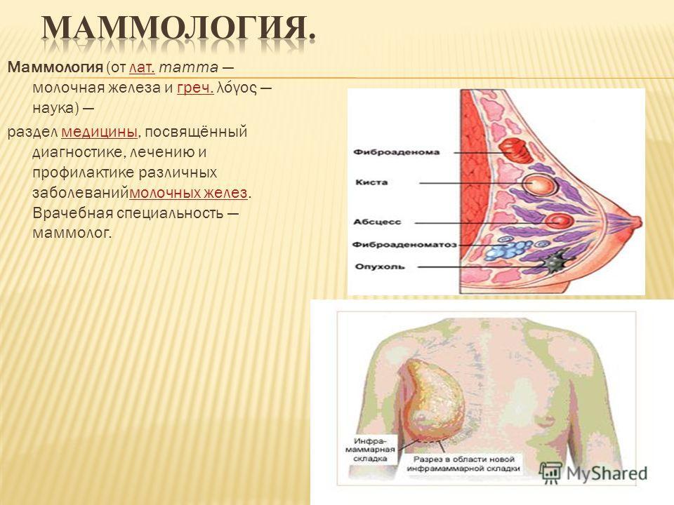 Маммология (от лат. mamma молочная железа и греч. λόγος наука) лат.греч. раздел медицины, посвящённый диагностике, лечению и профилактике различных заболеваниймолочных желез. Врачебная специальность маммолог.медицинымолочных желез