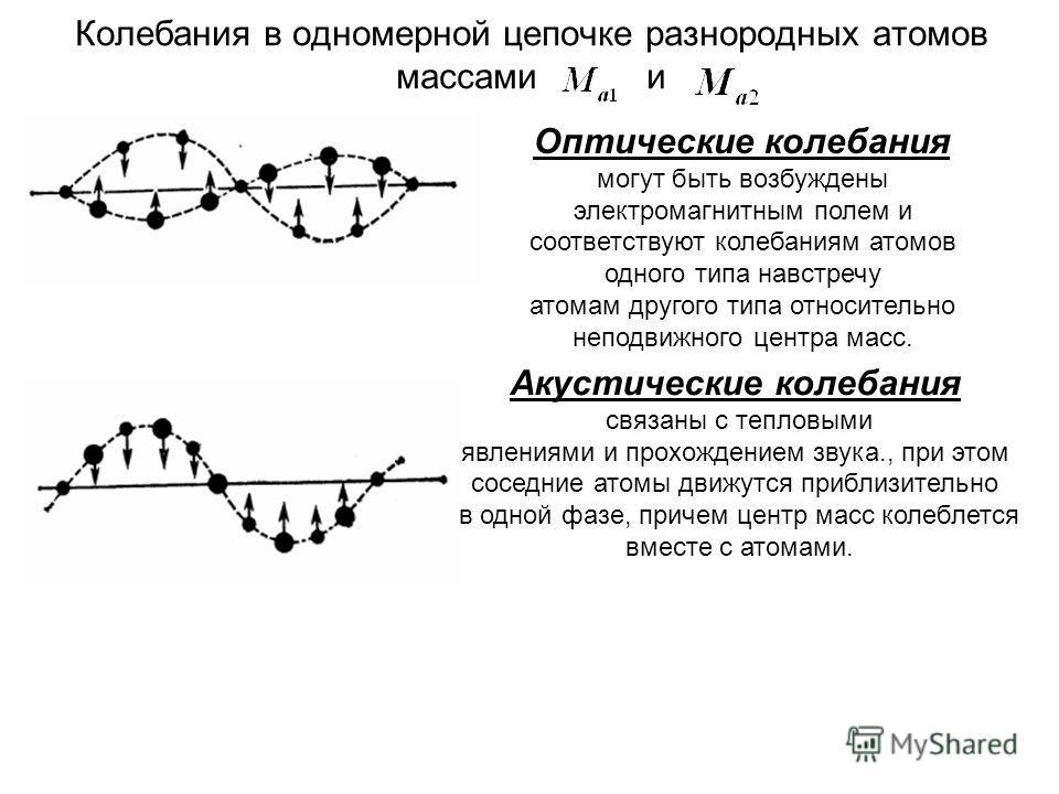 Колебания в одномерной цепочке разнородных атомов массами и Оптические колебания могут быть возбуждены электромагнитным полем и соответствуют колебаниям атомов одного типа навстречу атомам другого типа относительно неподвижного центра масс. Акустичес