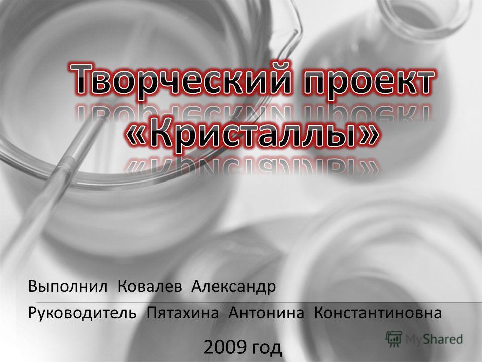 Выполнил Ковалев Александр Руководитель Пятахина Антонина Константиновна 2009 год