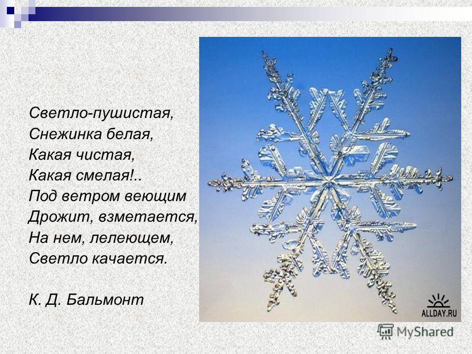 Светло-пушистая, Снежинка белая, Какая чистая, Какая смелая!.. Под ветром веющим Дрожит, взметается, На нем, лелеющем, Светло качается. К. Д. Бальмонт