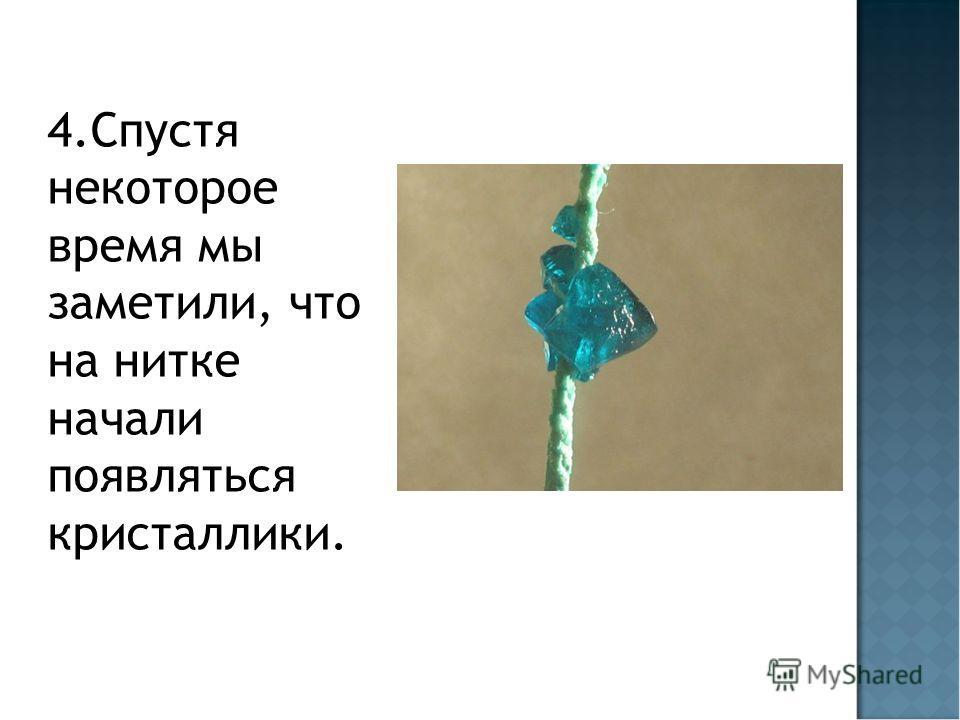 4. Спустя некоторое время мы заметили, что на нитке начали появляться кристаллики.