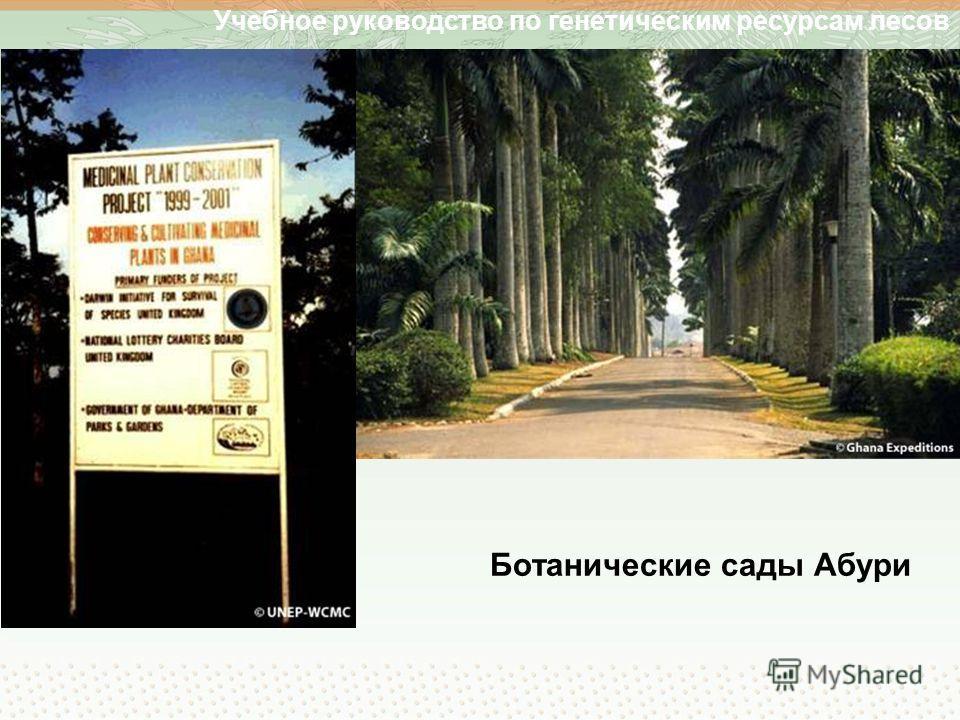 Учебное руководство по генетическим ресурсам лесов Ботанические сады Абури