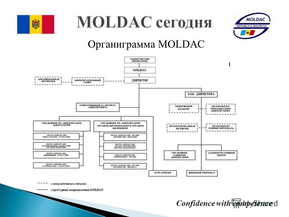 Органиграмма MOLDAC Confidence with competence