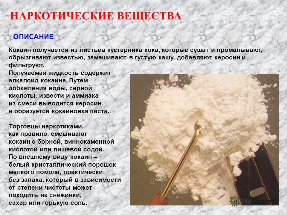 НАРКОТИЧЕСКИЕ ВЕЩЕСТВА ОПИСАНИЕ Кокаин получается из листьев кустарника кока, которые сушат и промалывают, обрызгивают известью, замешивают в густую кашу, добавляют керосин и фильтруют. Получаемая жидкость содержит алкалоид кокаина. Путем добавления