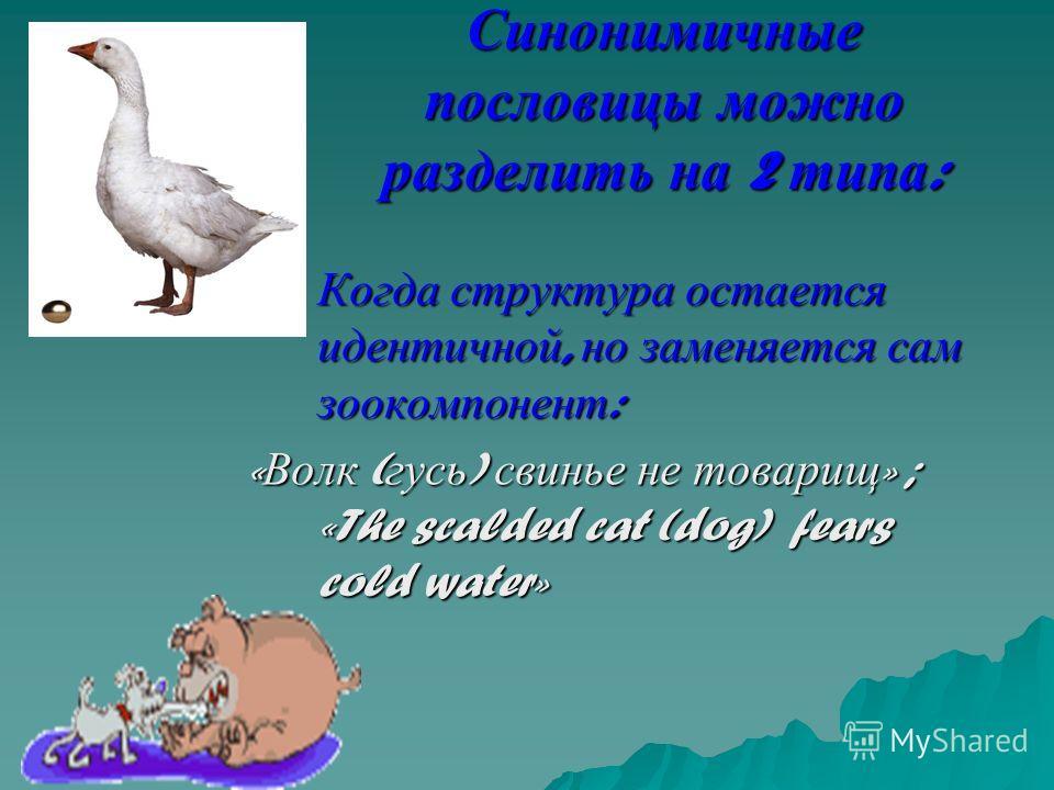 Синонимичные пословицы можно разделить на 2 типа : 1. Когда структура остается идентичной, но заменяется сам зоокомпонент : « Волк ( гусь ) свинье не товарищ » ; «The scalded cat (dog) fears cold water»