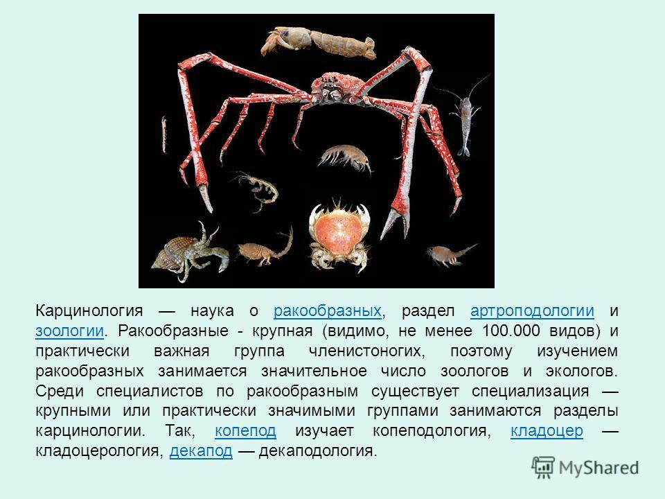 Карцинология наука о ракообразных, раздел артроподологии и зоологии. Ракообразные - крупная (видимо, не менее 100.000 видов) и практически важная группа членистоногих, поэтому изучением ракообразных занимается значительное число зоологов и экологов.