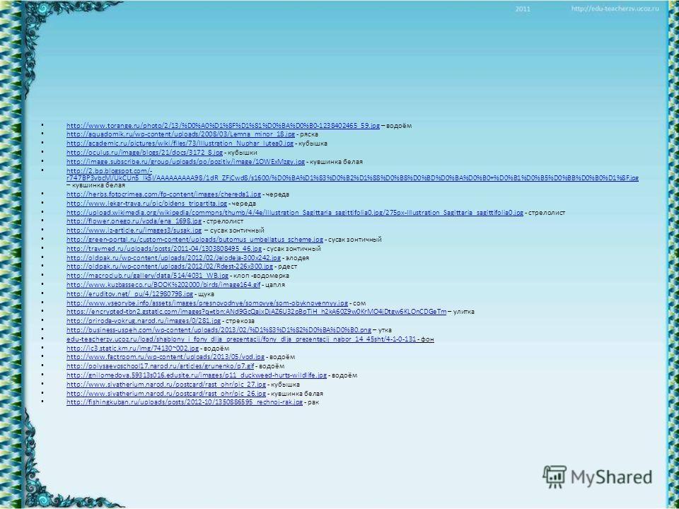 http://www.torange.ru/photo/2/13/%D0%A0%D1%8F%D1%81%D0%BA%D0%B0-1238402465_59. jpg – водоём http://www.torange.ru/photo/2/13/%D0%A0%D1%8F%D1%81%D0%BA%D0%B0-1238402465_59. jpg http://aquadomik.ru/wp-content/uploads/2008/03/Lemna_minor_18. jpg - ряска
