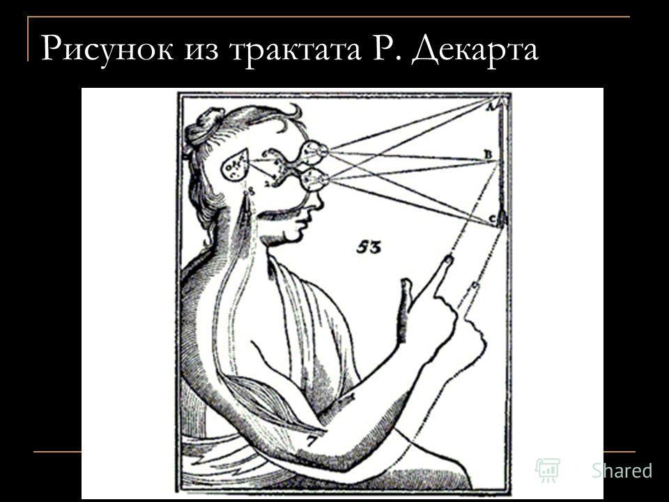 Рисунок из трактата Р. Декарта