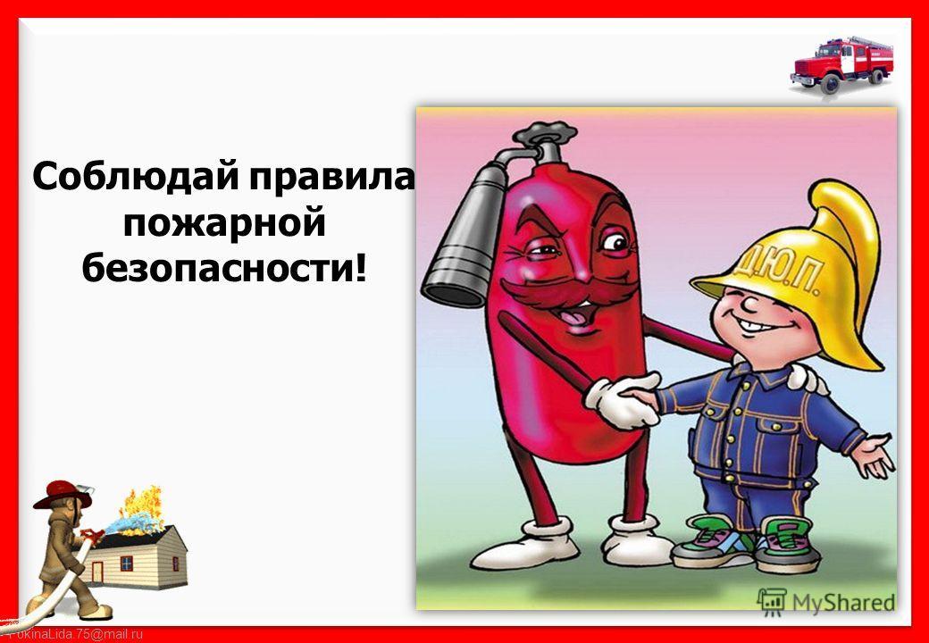 FokinaLida.75@mail.ru Соблюдай правила пожарной безопасности!
