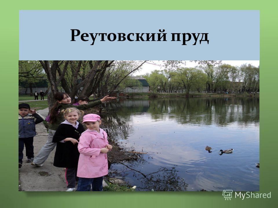 Реутовский пруд