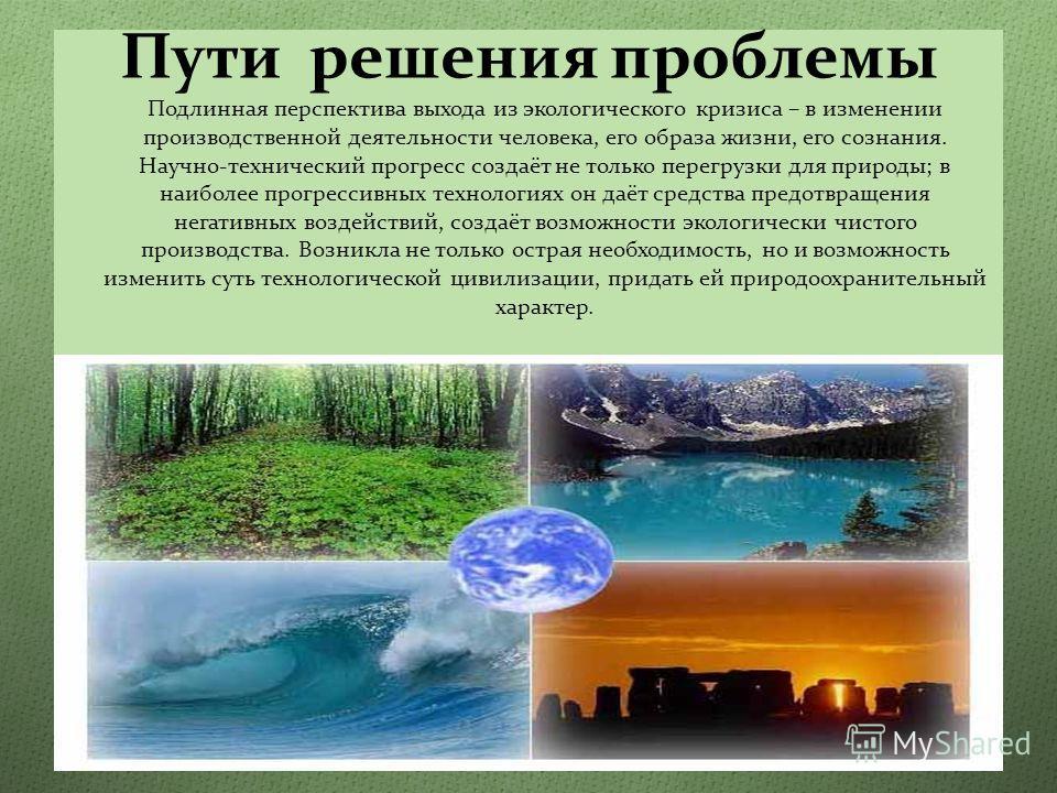 Проблема экологии и пути ее решения