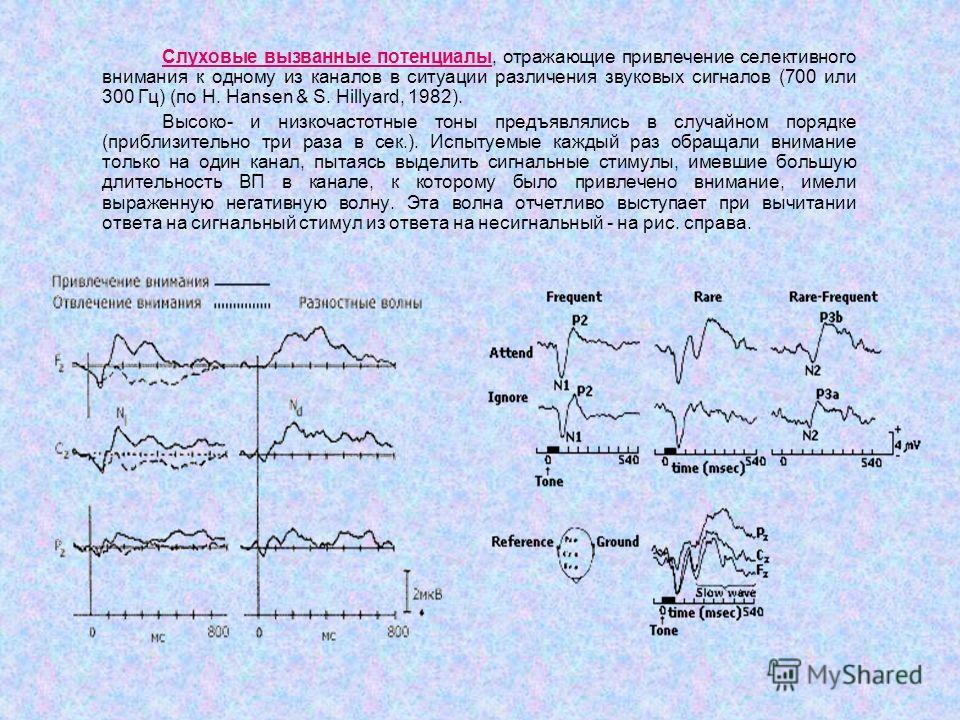 Слуховые вызванные потенциалы Слуховые вызванные потенциалы, отражающие привлечение селективного внимания к одному из каналов в ситуации различения звуковых сигналов (700 или 300 Гц) (по H. Hansen & S. Hillyard, 1982). Высоко- и низкочастотные тоны п