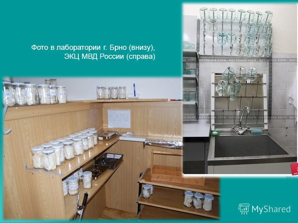 Фото в лаборатории г. Брно (внизу), ЭКЦ МВД России (справа)