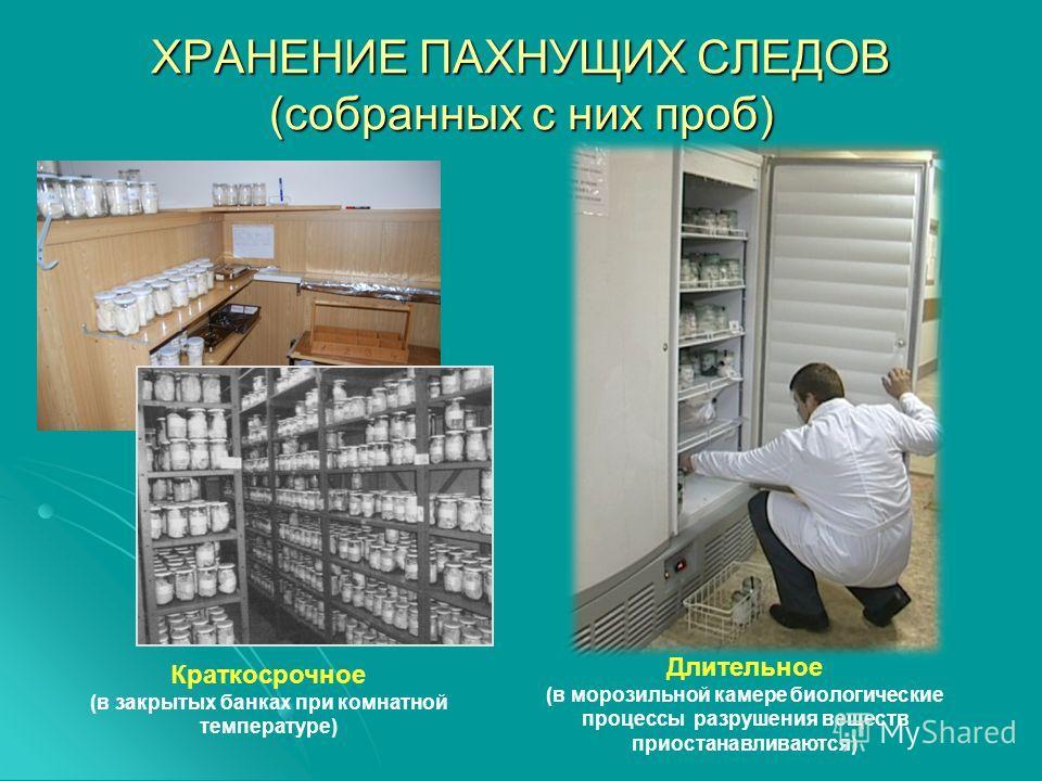ХРАНЕНИЕ ПАХНУЩИХ СЛЕДОВ (собранных с них проб) Краткосрочное (в закрытых банках при комнатной температуре) Длительное (в морозильной камере биологические процессы разрушения веществ приостанавливаются)