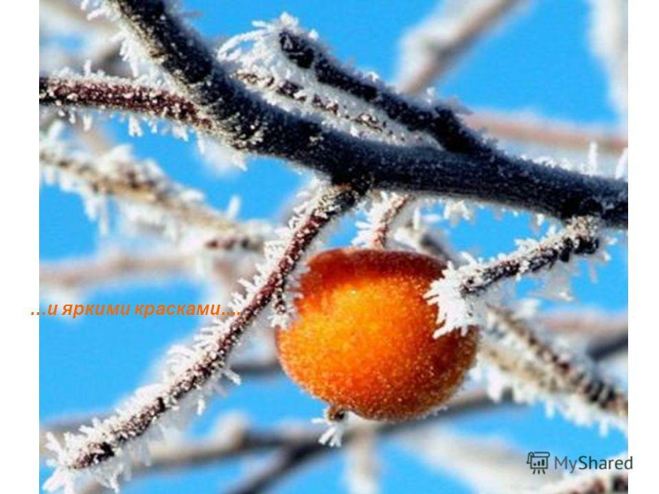 C наступающими Новым Годом и Рождеством Христовым! И пусть Новый Год войдет в дом с такими же яркими лучами...