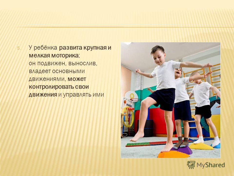 5. У ребёнка развита крупная и мелкая моторика; он подвижен, вынослив, владеет основными движениями, может контролировать свои движения и управлять ими