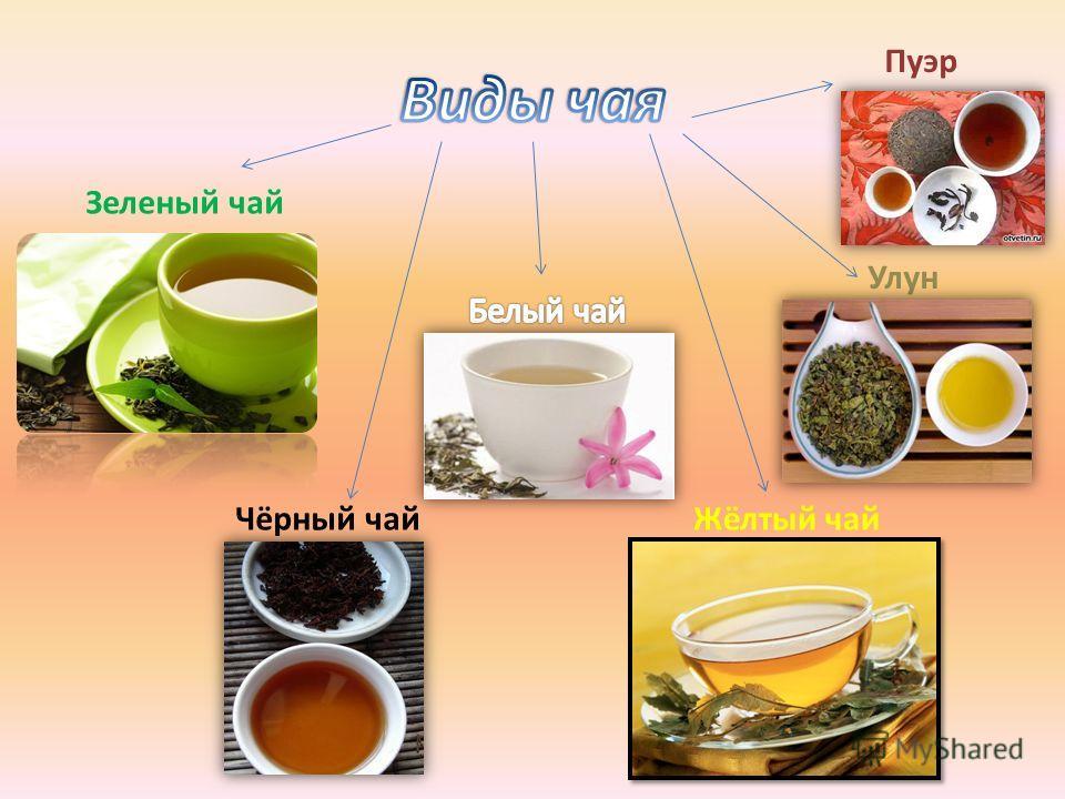 Зеленый чай Чёрный чайЖёлтый чай Улун Пуэр