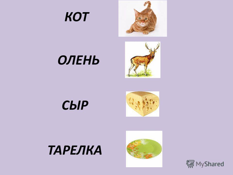 КОТ ОЛЕНЬ СЫР ТАРЕЛКА