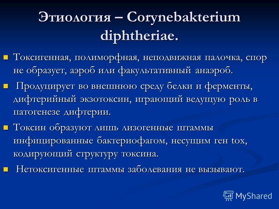 Этиология – Corynebakterium diphtheriae. Токсигенная, полиморфная, неподвижная палочка, спор не образует, аэроб или факультативный анаэроб. Токсигенная, полиморфная, неподвижная палочка, спор не образует, аэроб или факультативный анаэроб. Продуцирует