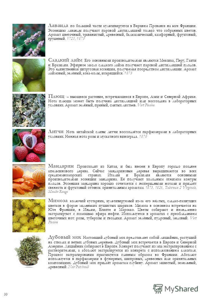Лаванда по большей части культивируется в Верхнем Провансе на юге Франции. Эссенцию лаванды получают паровой дистилляцией только что собранных цветов. Аромат цветочный, травянистый, древесный, бальзамический, камфорный, фруктовый, грушевый. 1725, 187