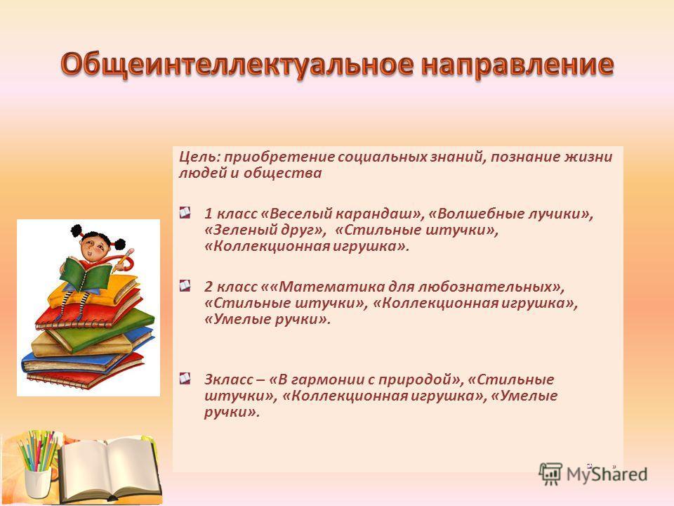 Цель: приобретение социальных знаний, познание жизни людей и общества 1 класс «Веселый карандаш», «Волшебные лучики», «Зеленый друг», «Стильные штучки», «Коллекционная игрушка». 2 класс ««Математика для любознательных», «Стильные штучки», «Коллекцион