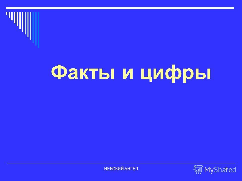 НЕВСКИЙ АНГЕЛ8 Факты и цифры