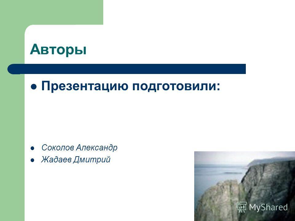 Авторы Презентацию подготовили: Соколов Александр Жадаев Дмитрий