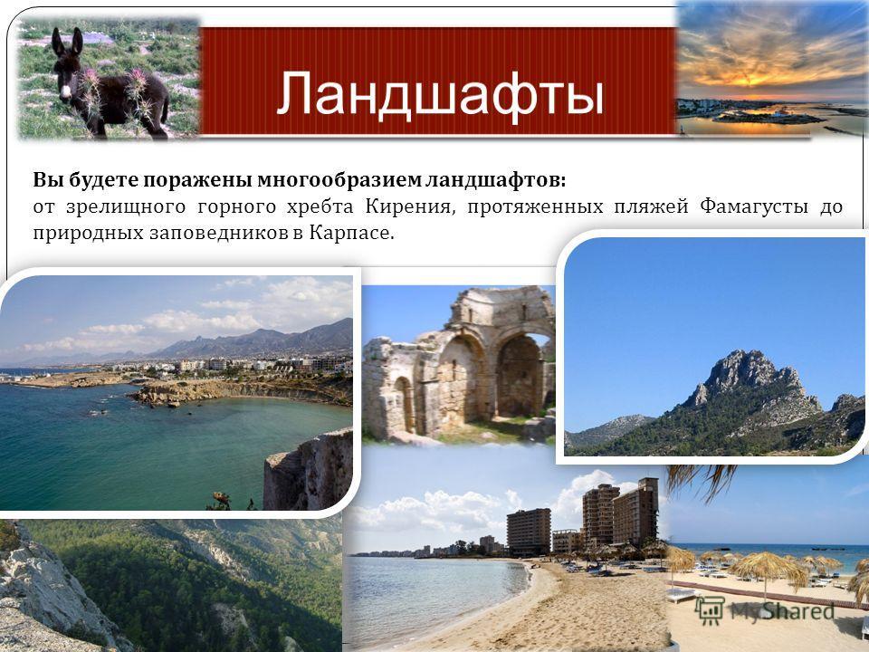 Вы будете поражены многообразием ландшафтов : от зрелищного горного хребта Кирения, протяженных пляжей Фамагусты до природных заповедников в Карпасе.