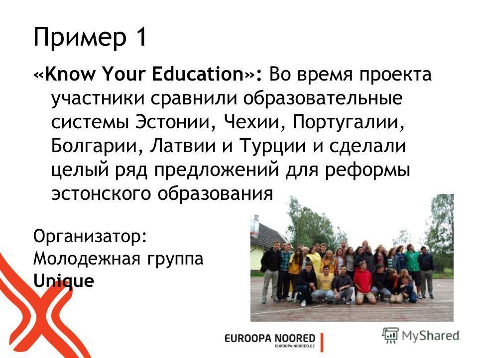 Пример 1 «Know Your Education»: Во время проекта участники сравнили образовательные системы Эстонии, Чехии, Португалии, Болгарии, Латвии и Турции и сделали целый ряд предложений для реформы эстонского образования Организатор: Молодежная группа Unique