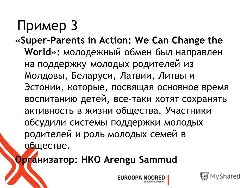 Пример 3 «Super-Parents in Action: We Can Change the World»: молодежный обмен был направлен на поддержку молодых родителей из Молдовы, Беларуси, Латвии, Литвы и Эстонии, которые, посвящая основное время воспитанию детей, все-таки хотят сохранять акти