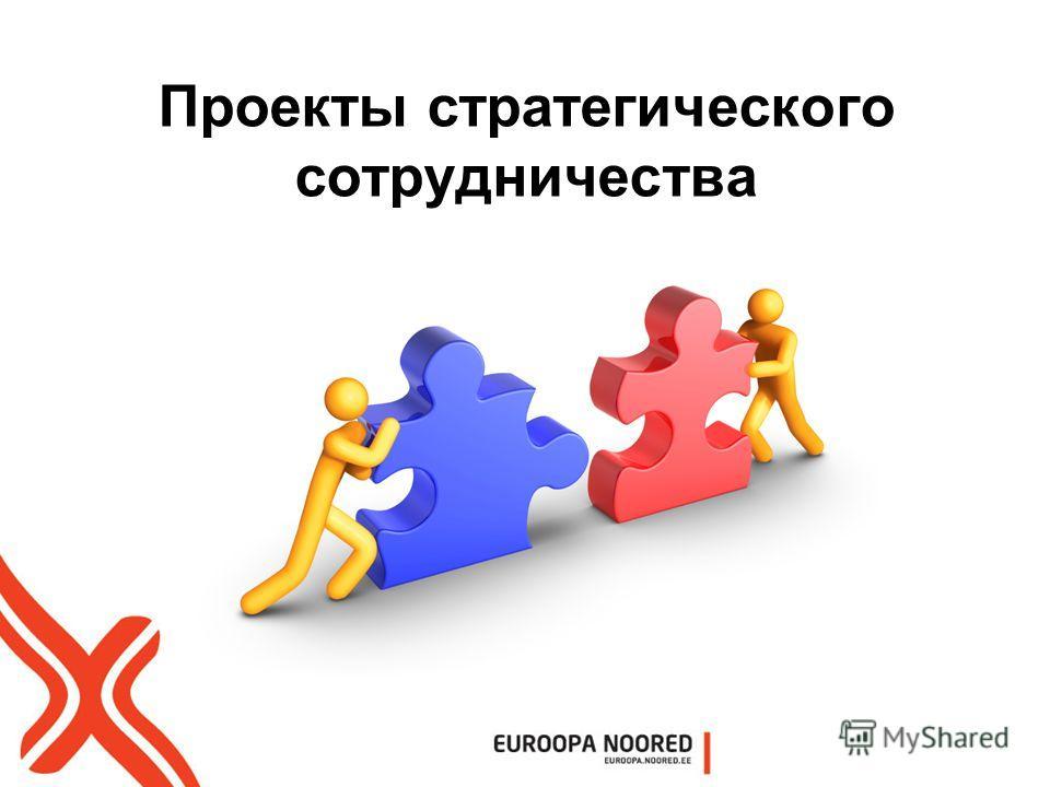 Проекты стратегического сотрудничества