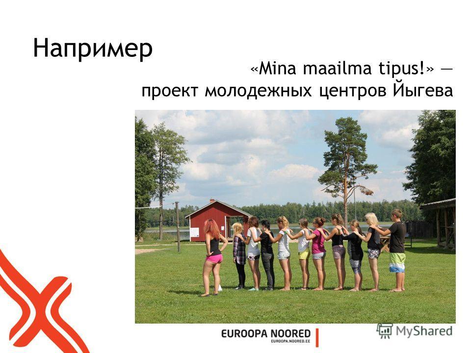Например «Mina maailma tipus!» проект молодежных центров Йыгева